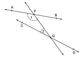Short Notes - Introduction to Euclid's Geometry Class 9 Notes | EduRev