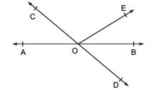 Ex 6.1 NCERT Solutions- Lines and Angles Class 9 Notes   EduRev