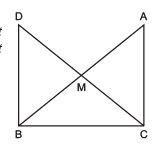 Ex 7.1 NCERT Solutions- Triangles Class 9 Notes | EduRev