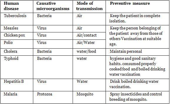 NCERT Summary: Summary of Biology- 7 UPSC Notes | EduRev