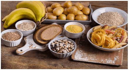 Nutrition, Digestion UPSC Notes | EduRev