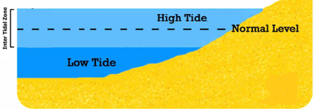 Movements of ocean water: Waves, Tides and Ocean Currents Notes | EduRev