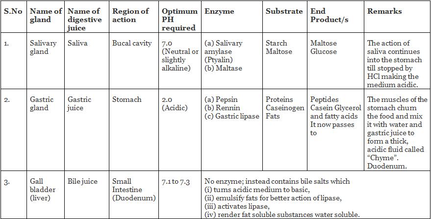 पोषण, पाचन UPSC Notes | EduRev
