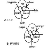 साउंड, लाइट - विशिष्ट जानकारी, सामान्य विज्ञान UPSC Notes   EduRev