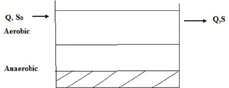 Activated Sludge & Lagoons Computer Science Engineering (CSE) Notes | EduRev