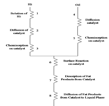 Edible and Essential Oils Chemical Engineering Notes | EduRev
