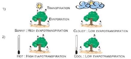 Estimating Irrigation Demand (Part - 2) Civil Engineering (CE) Notes | EduRev