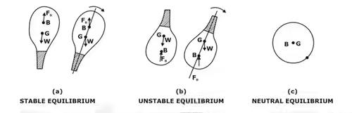 Study Notes on Buoyancy Notes | EduRev
