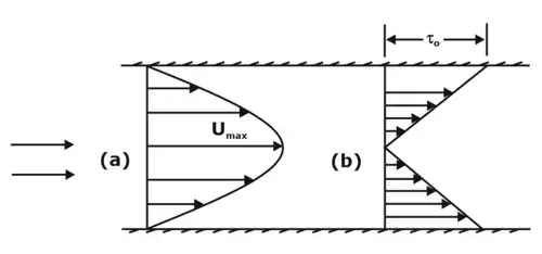 Laminar & Turbulent Flow Notes | EduRev