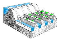 Estimating Irrigation Demand (Part - 1) Civil Engineering (CE) Notes | EduRev