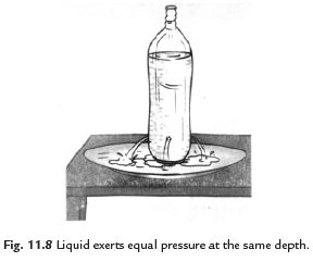 Long Answers - Force and Pressure, Science, Class 8 Class 8 Notes | EduRev
