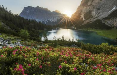 सारांश - शुचिपर्यावरणम् | Summary Notes | EduRev