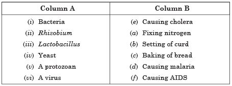 NCERT Solutions - Microorganisms: Friend and Foe, Science, Class 8 Class 8 Notes | EduRev
