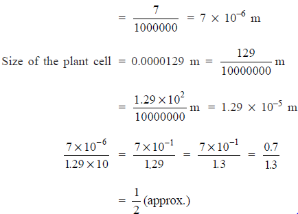 NCERT Solutions(Part- 2)- Exponents and Powers Class 8 Notes | EduRev