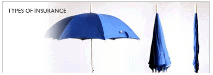 Different Type of Insurance & Insurance Pooling - Principles of Insurance, B com B Com Notes | EduRev