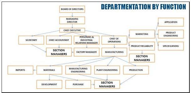 Departmentation - Organizing, Contemporary Management B Com Notes | EduRev