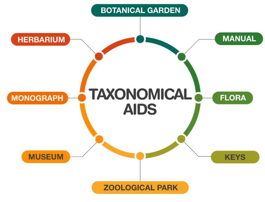 Taxonomical Categories and Taxonomical Aids NEET Notes   EduRev