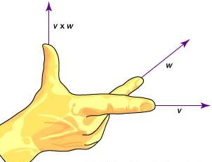 Vectors, Newton`s law of Motion Physics Notes | EduRev