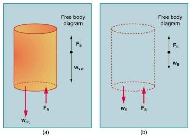 Archimedes' Principle Physics Notes | EduRev