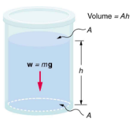 Variation of Pressure with Depth in a Fluid Physics Notes | EduRev