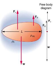 Motion of an Object in a Viscous Fluid Physics Notes | EduRev