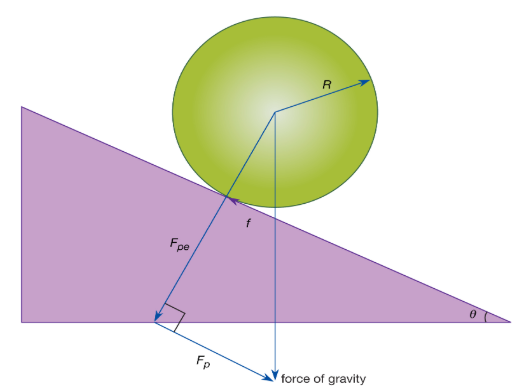 Rotation about a Fixed Axis and Moving Axis Physics Notes | EduRev