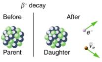 Nuclear Decay and Conservation Laws Physics Notes | EduRev