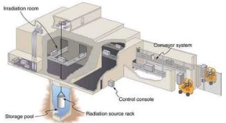 Food Irradiation Physics Notes | EduRev