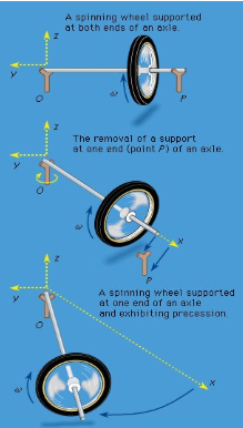 Spinning tops and gyroscopes Physics Notes | EduRev