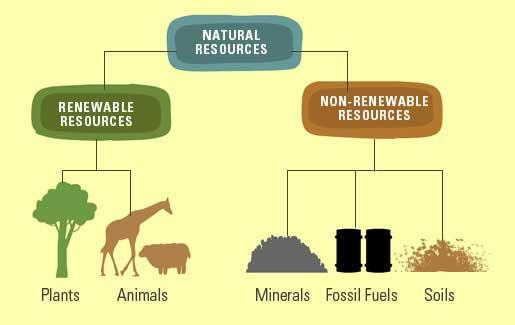 Natural Resources Class 5 Notes | EduRev