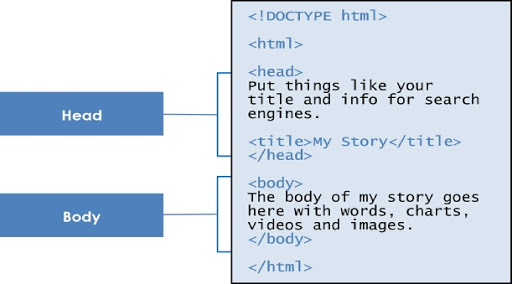 HTML Basics: Revision Notes Class 10 Notes | EduRev