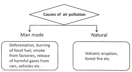 Notes: Our Environment and Natural Calamities (Part- 2) Class 5 Notes | EduRev