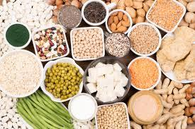 Detailed Notes: Human Body and Nutrition(Part - 2) Class 5 Notes | EduRev
