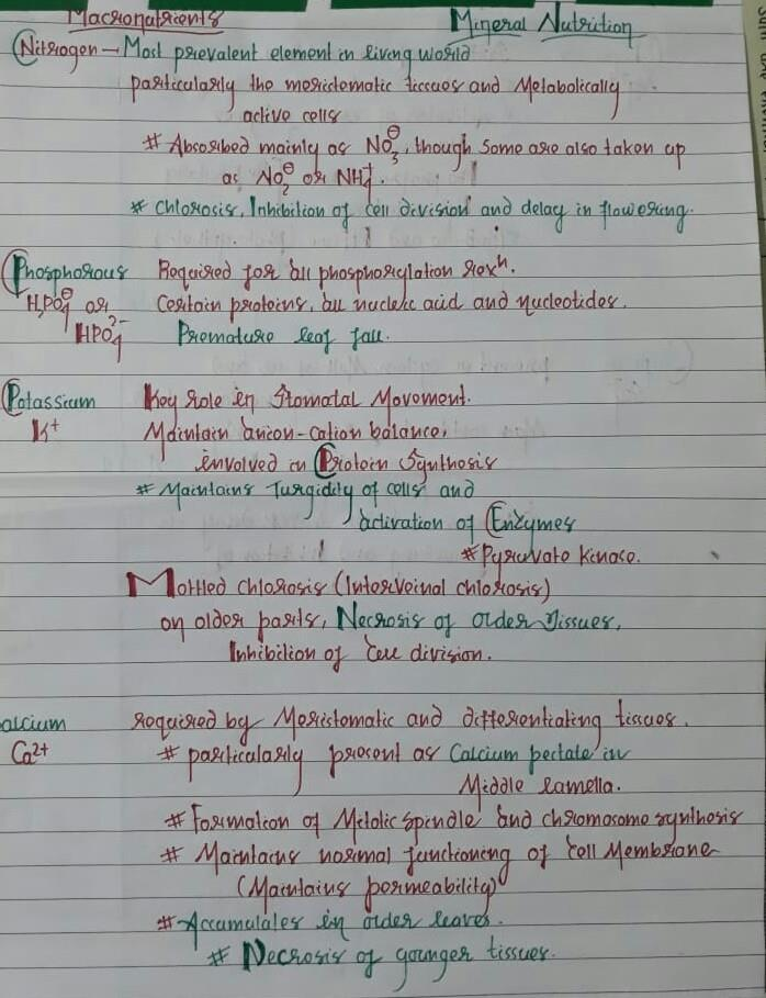Mineral Nutrition MBBS Notes | EduRev