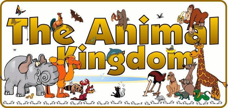 Animal kingdom revision notes NEET Notes   EduRev