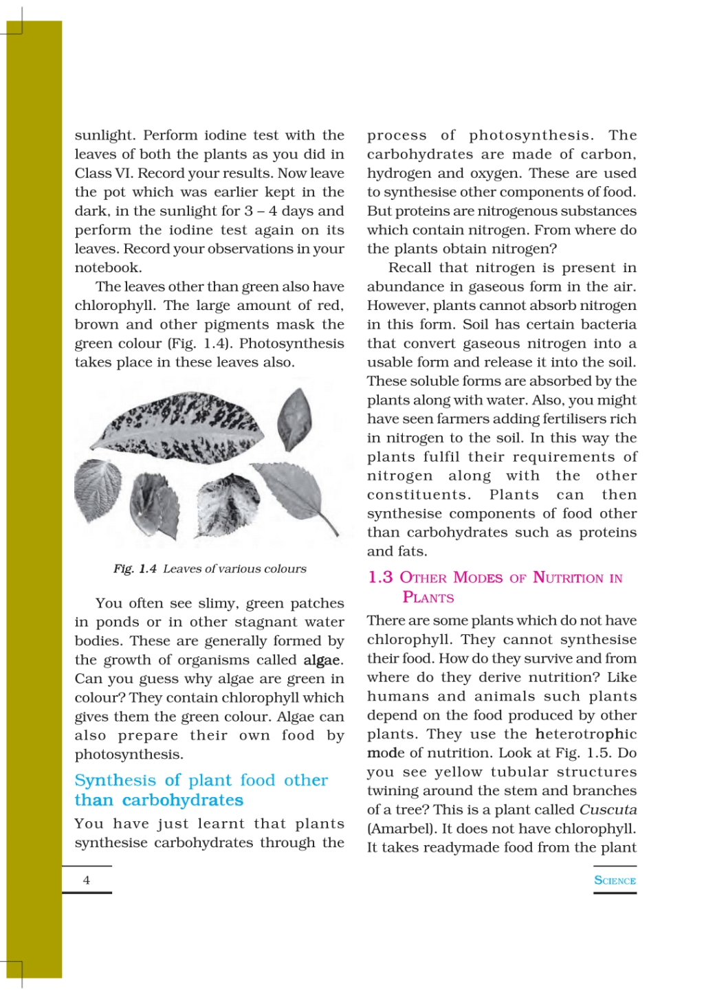 Chapter-1 Nutrition in Plants. Class 7 Notes   EduRev