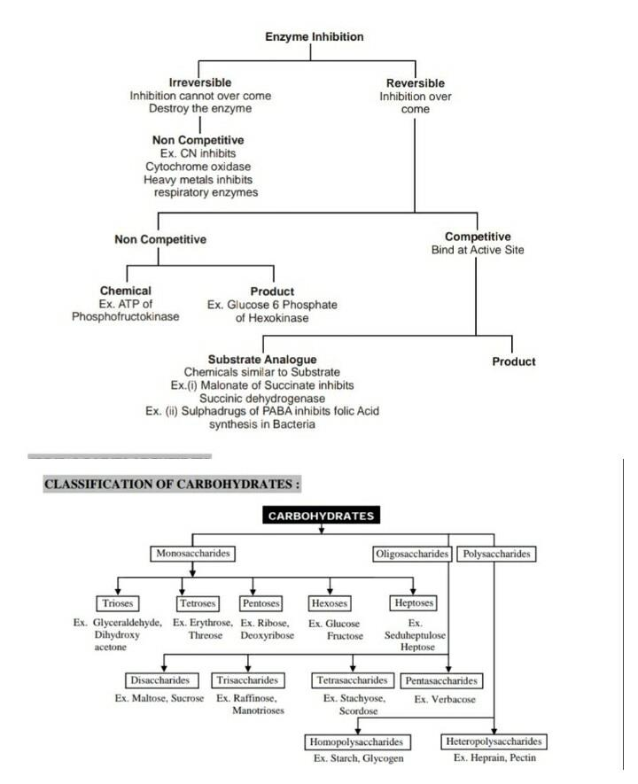 Some Important Flow Chart. Notes   EduRev