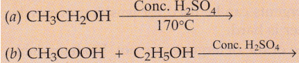Solutions of Carbon And Its Compounds (Page No - 241) - Chemistry Lakhmir Singh, Class 10 Class 10 Notes   EduRev