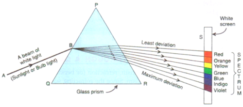 Solutions of The Human Eyes And The Colorful Wor (Page No- 288) - Physics By Lakhmir Singh, Class 10 Class 10 Notes | EduRev