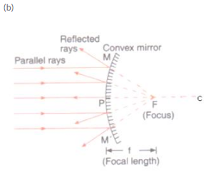 Solutions of Reflection of Light (Page No- 179) - Physics By Lakhmir Singh, Class 10 Class 10 Notes | EduRev