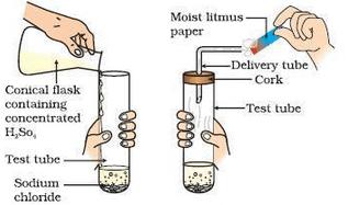Lakhmir Singh & Manjit Kaur: Acids, Bases & Salts, Solutions- 2 Class 10 Notes | EduRev