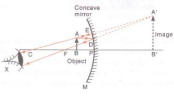 Solutions of Reflection of Light (Page No- 189) - Physics By Lakhmir Singh, Class 10 Class 10 Notes | EduRev