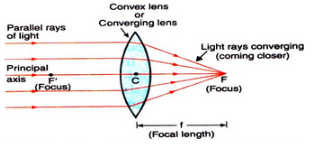 Solutions of Refraction of Light (Page No- 242) - Physics By Lakhmir Singh, Class 10 Class 10 Notes | EduRev