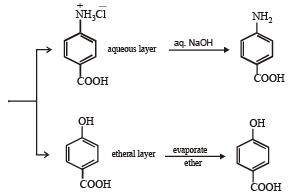 Subjective Type Questions: Compounds Containing Nitrogen- 2 | JEE Advanced Notes | EduRev