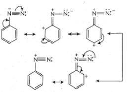 Previous Year Questions (2014-19) - Amines Notes | EduRev