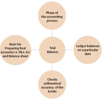 Unit 3: Trial Balance CA CPT Notes   EduRev