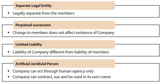 Introduction - The Companies Act, 2013 CA CPT Notes | EduRev