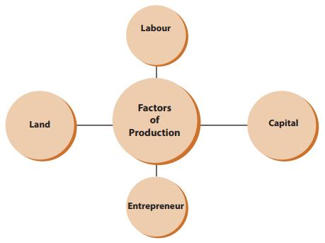 Theory of Production (Part - 1) CA Foundation Notes | EduRev