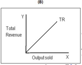 Meaning and Types Of Markets (Part - 2) CA CPT Notes   EduRev