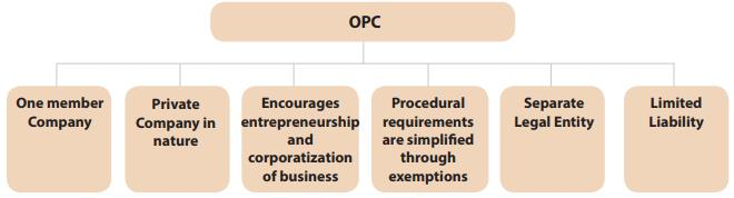 Classes Of Companies Under The Act (Part - 1) CA Foundation Notes | EduRev
